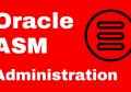Oracle11g ASM分区在线扩容