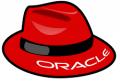 RHEL7.4 Oracle11gR2 RAC udev