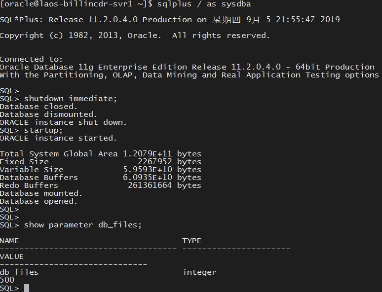 解决ORA-00059超出DB_FILES的最大值